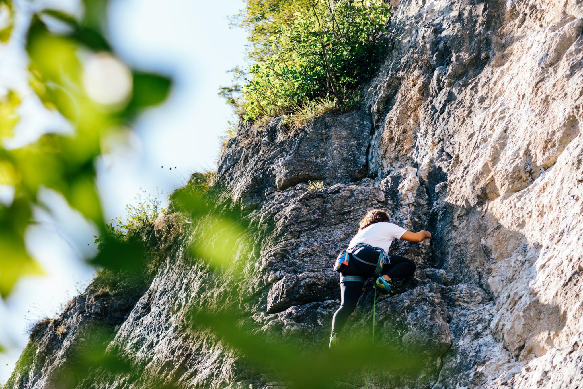 Kletterwand Marder